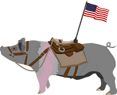 Pig updated with flag.png