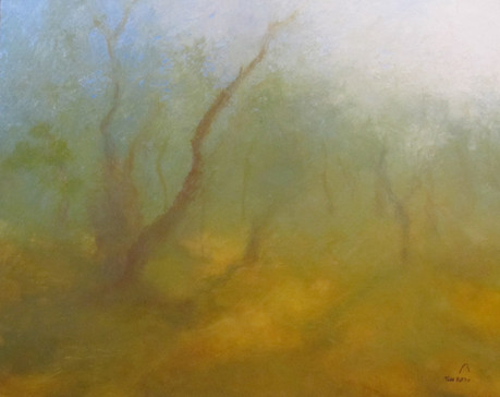 Winter Forest In Mist