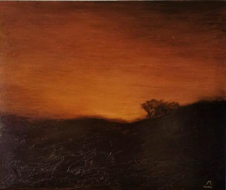 Bodega glow No. 1