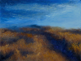 Field Under Dark Blue Sky