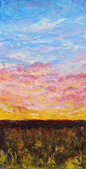 Enveloped Sky