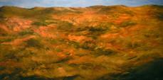 Orange Field And Hills