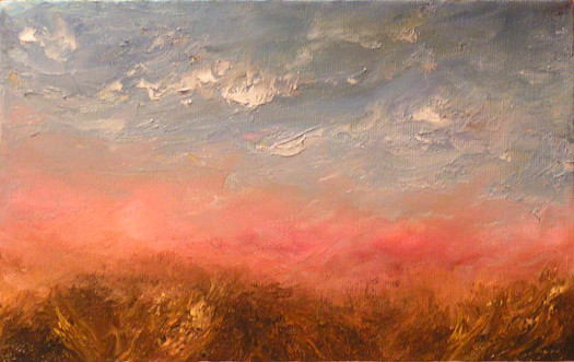 Field Under Rose Sky