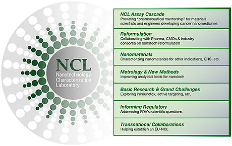 About-the-NCL.jpg