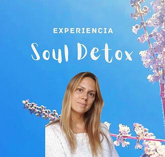 flyer soul detox.jpg