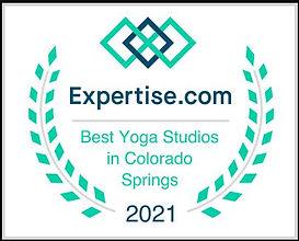 Expertise Award Regular.JPG