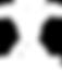 GFG Logo - Reversed_4x.png