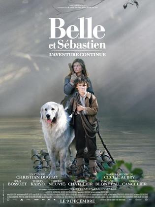 Belle et Sébastien , l'aventure continue...