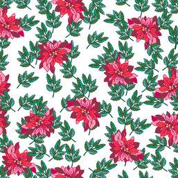Elegant Christmas Red Poinsettia White Background
