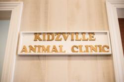Kidzville Animal Clinic