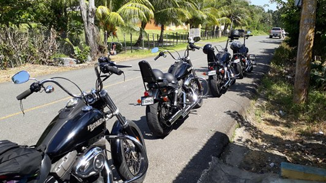 Harley-Davidson Island Tour Single