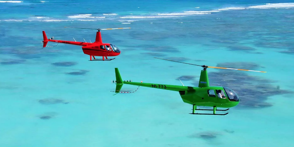 Helicopter Island 40min  US$ 319.00