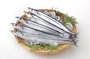 地元の魚が食べられる
