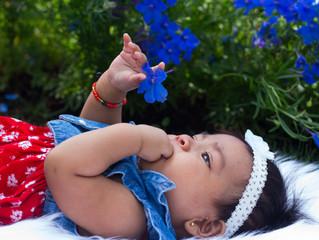 Baby Rosalinda at the Dallas Arboretum