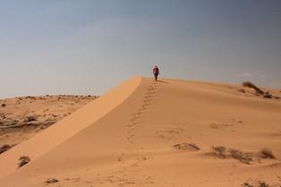 Wüsten-Wanderung