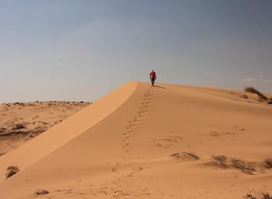 The silence of the desert