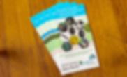 Exapta-Catalog-2018.jpg