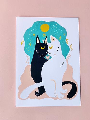 """5"""" x 7"""" Cat Prints"""