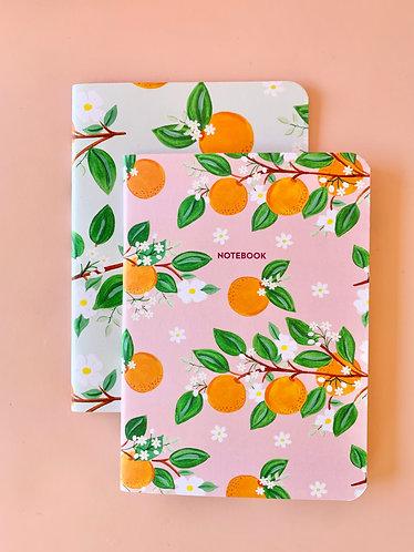 Orange Notebook Set