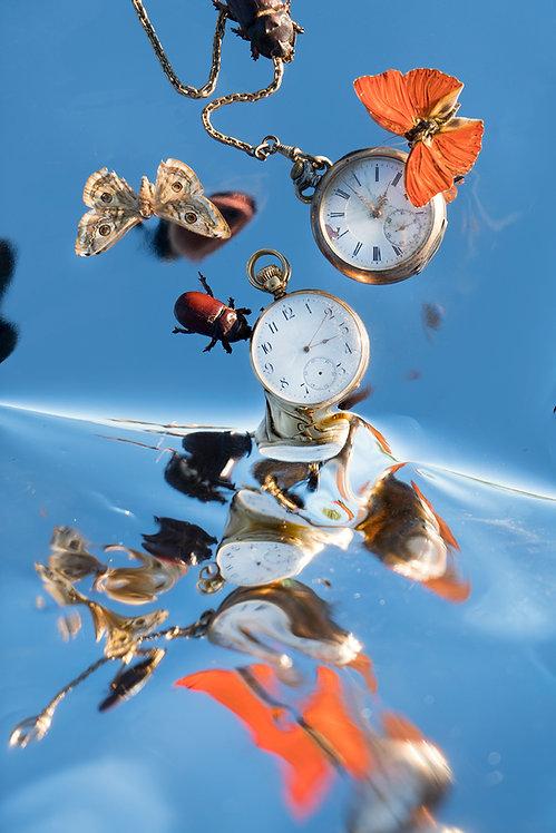 Kaleidoscopic Still Life, A tribute to Dalí