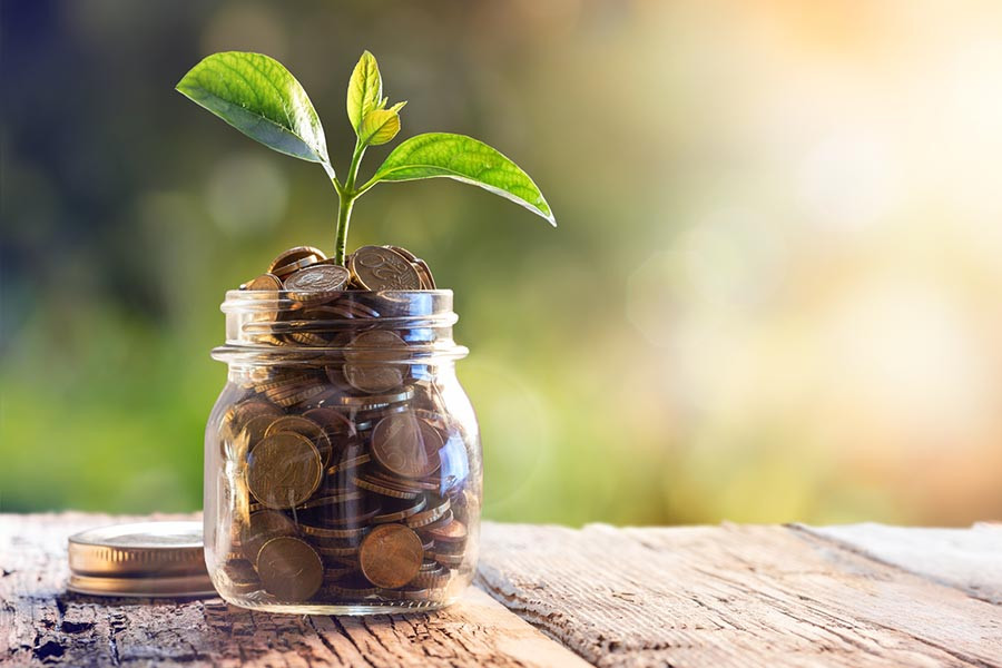A small glass jar of coins with a green plant growing out of it.