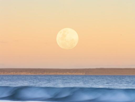 Full Moon In Aquarius | August 2019
