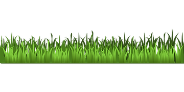grass-159804.png
