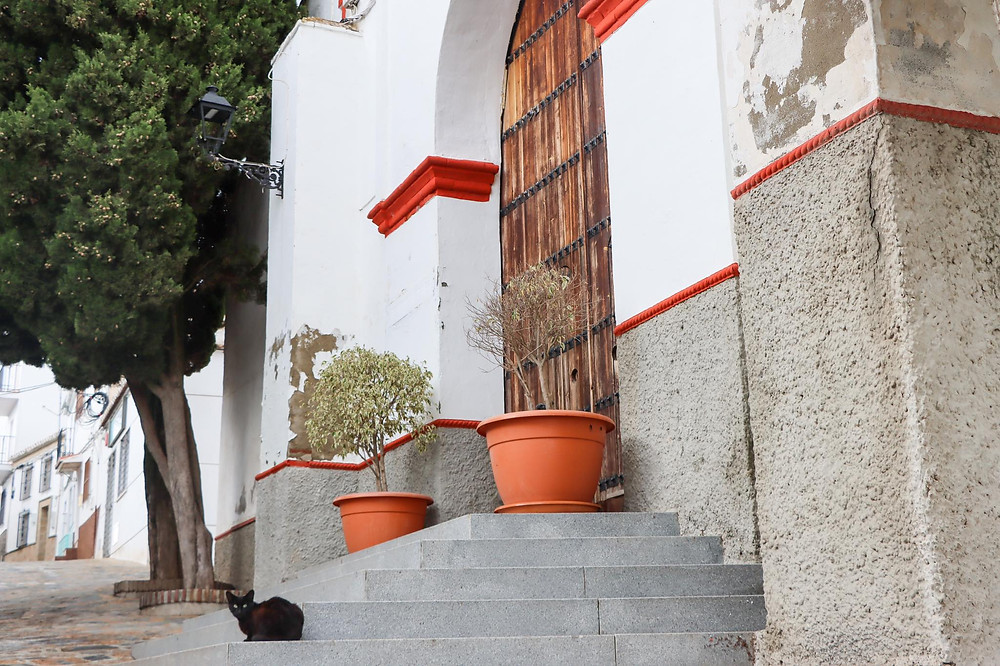 Historic church painting in white with red trim with a black cat sitting on the steps.