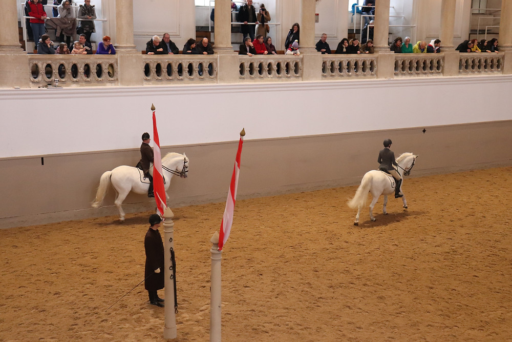 Spanish Riding School in the palace Vienna horses