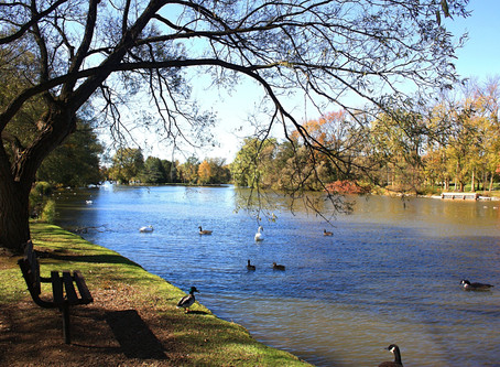 10 Things To Do In Stratford, Ontario