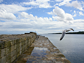 24 Things To Do in St Andrews, Scotland