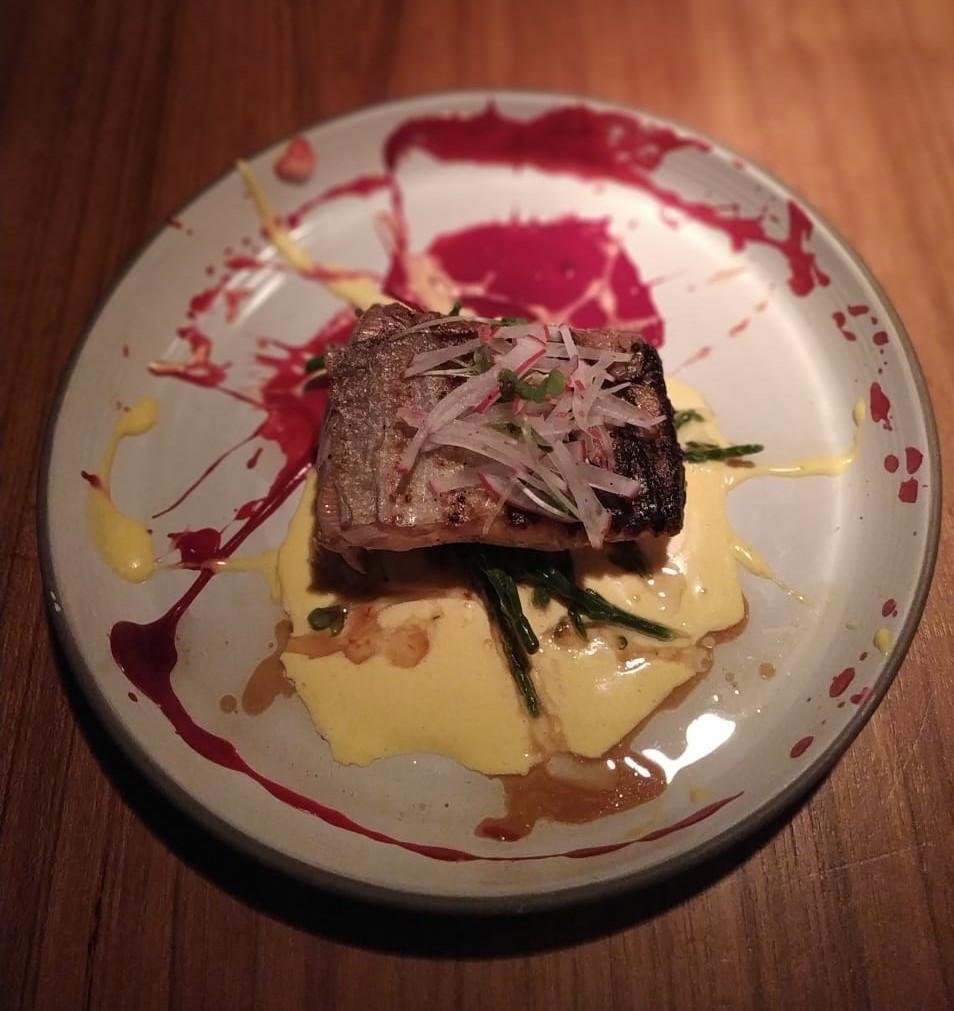Salmon dish from Social Sushi in Reykjavik Iceland