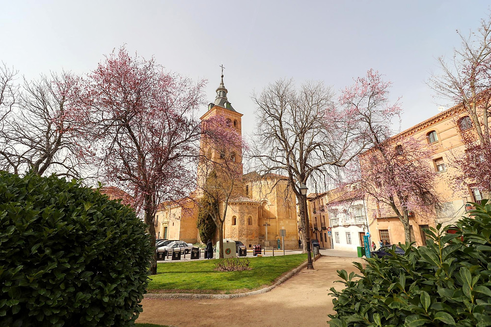 Small park area with purple blossom trees and a medieval church in the distance.