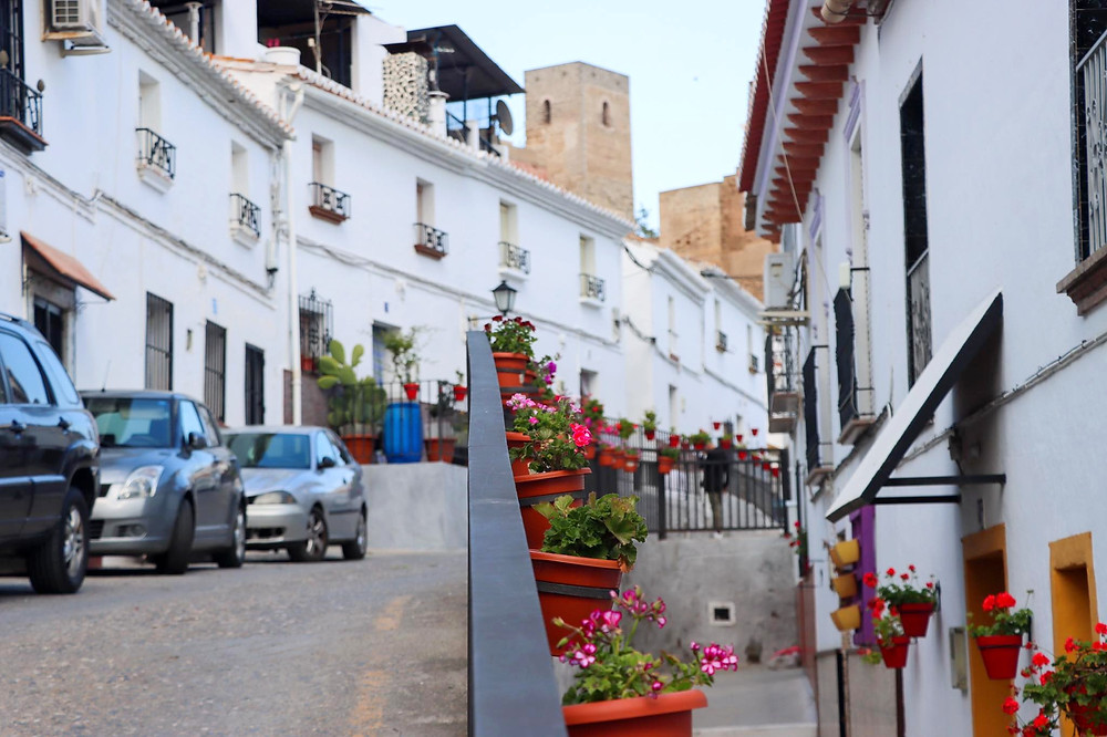 Street lined with white buildings and the castle in the background, a railing with flower pots on the right hand side sits in the centre of the image.
