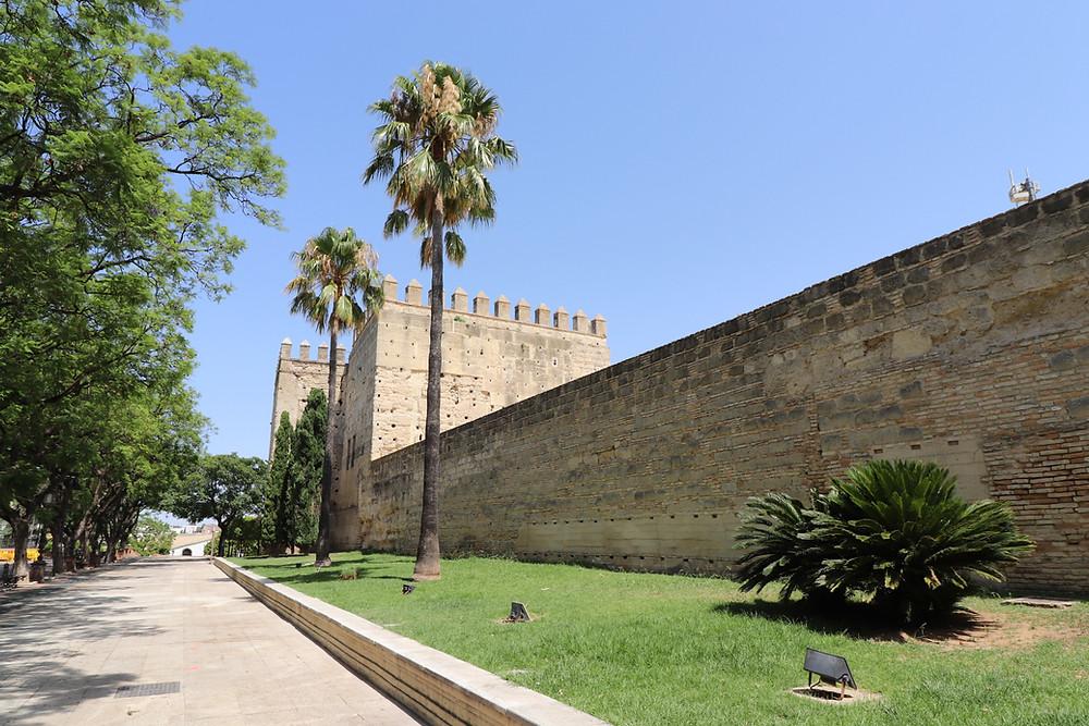 Alcázar de Jerez from the exterior under palm trees in Jerez, Cadiz, Spain