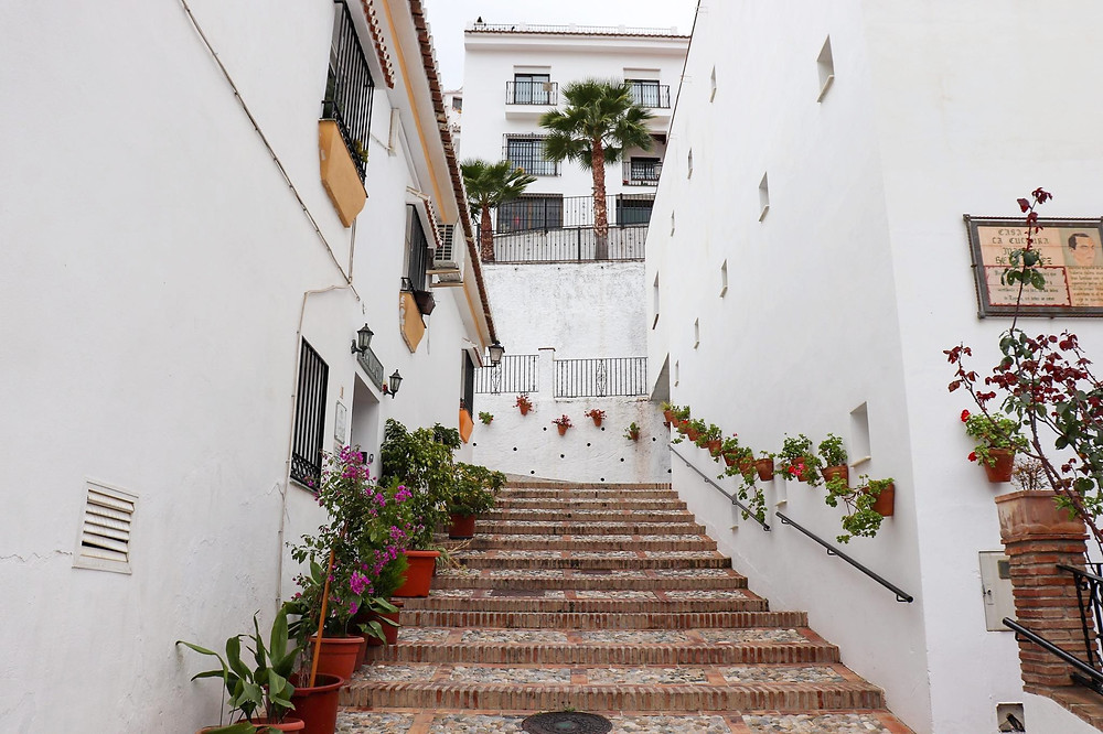 Steps lined with flowers and white walls leading upwards.