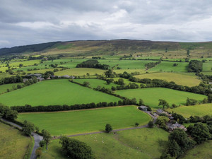 11 Unique Things To Do In and Around the Forest of Bowland