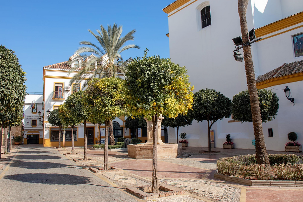 Small plaza lined with orange trees next to a tall white and yellow painted historic church.