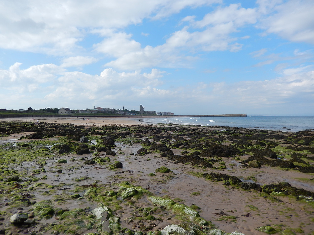 East Sands in St Andrews from the Fife Coastal Path, Scotland