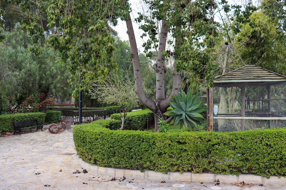 Small green park space with bushes and trees, a large bird cage sits on the right.
