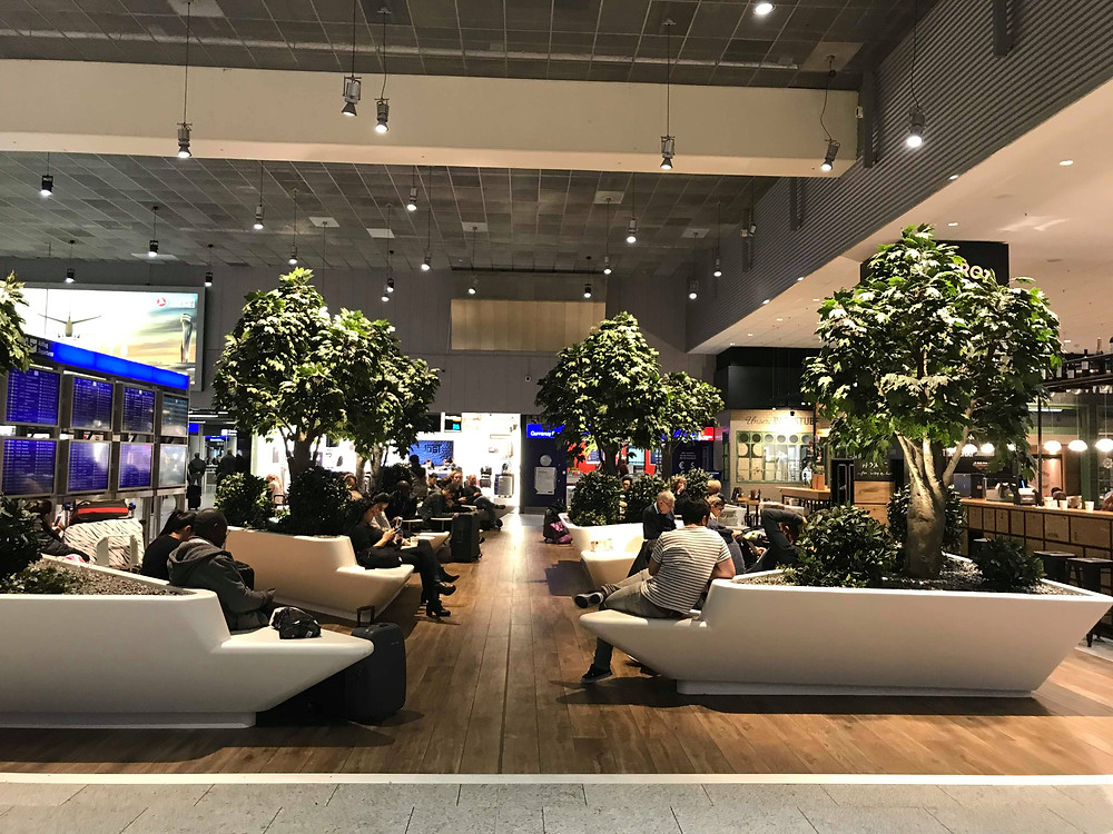 Inside Frankfurt Airport waiting room with trees in Germany