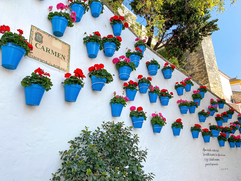 Blue plant pots attached to a white wall with red flowers and a tiled sign saying Carmen.