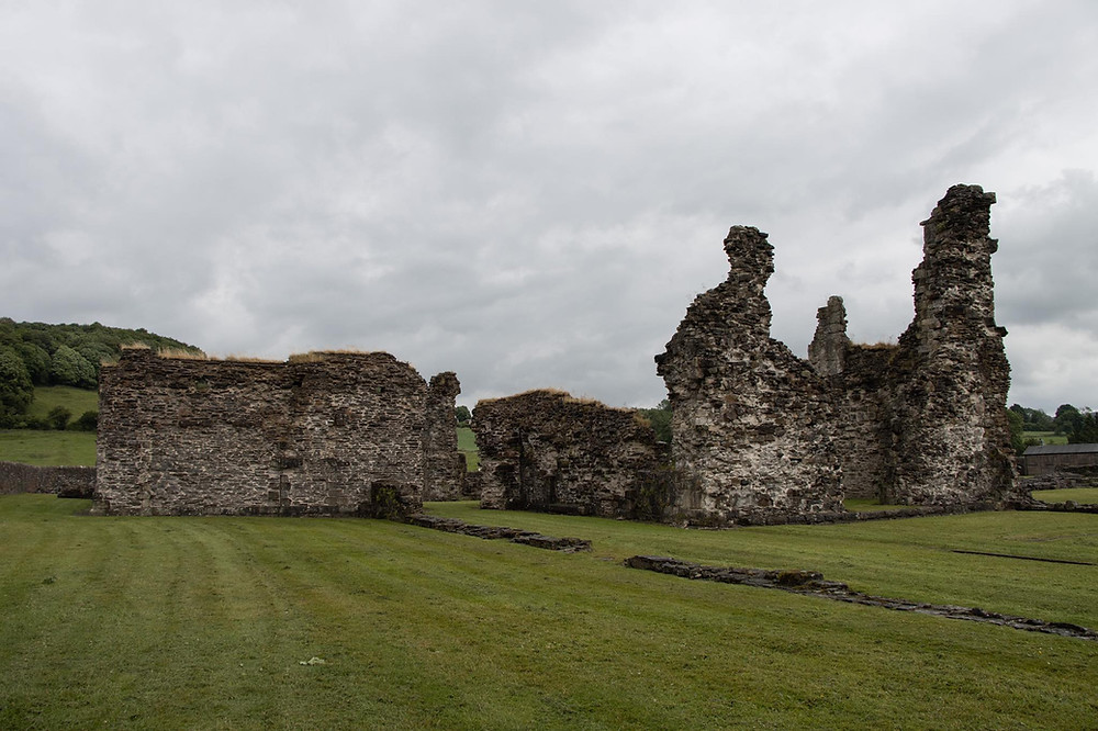 Ruins of a medieval abbey with hardly any of its main building remaining, sitting in a grass field.