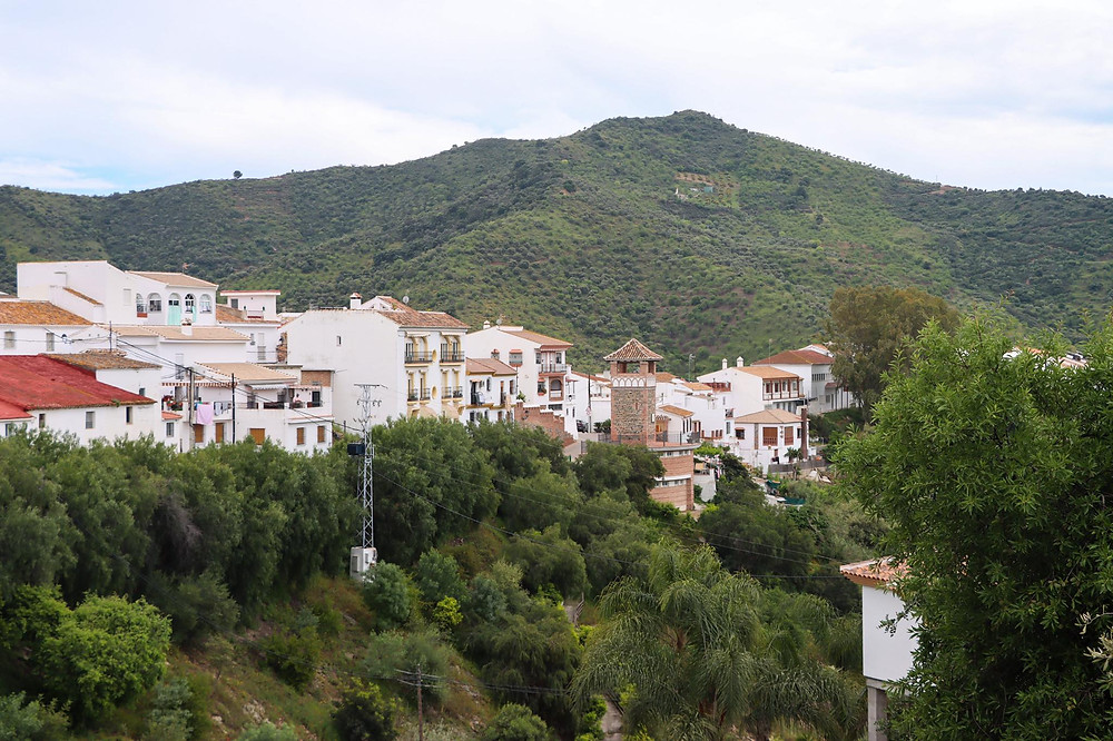 View of a white village in the middle of trees and fields.