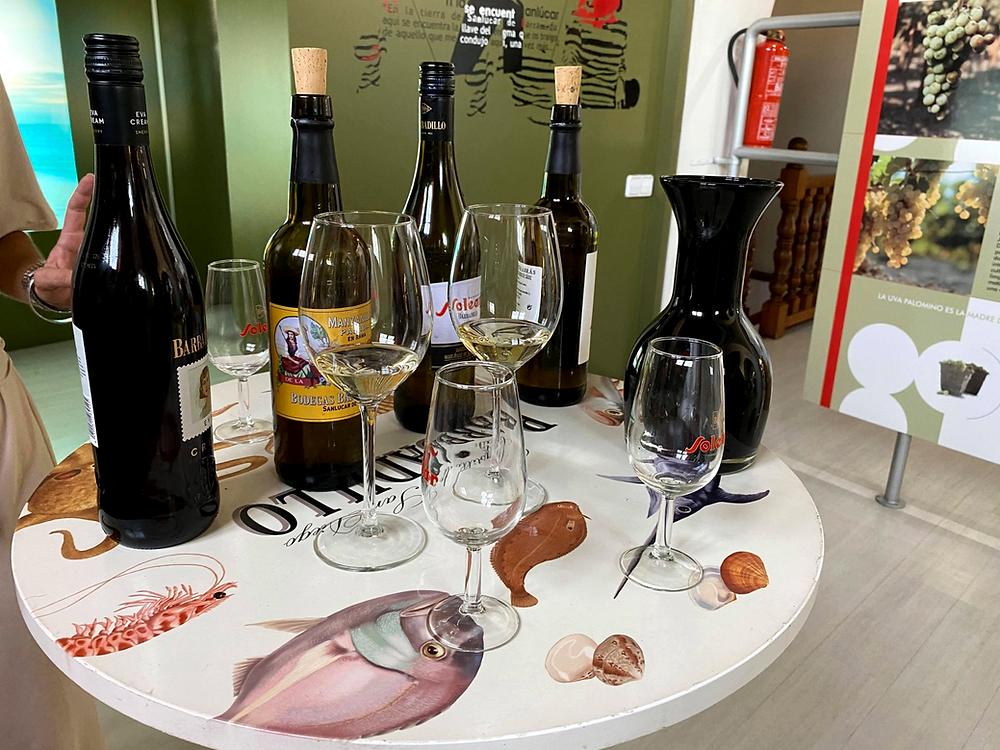 Bodegas Barbadillo Wine Tasting in Sanlucar, Cadiz