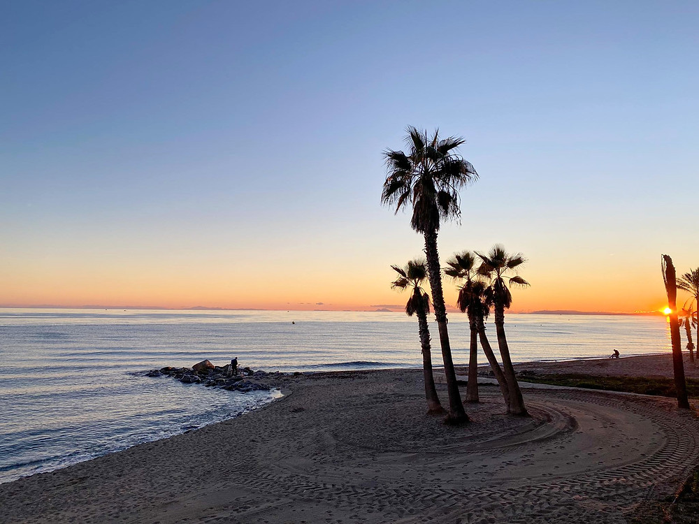 Orange sunset over the sea at Marbella, with the beach in a shadow and 4 palm trees sitting in the middle of the sand.