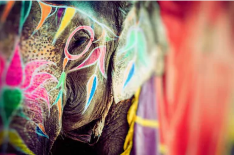 Dein Bucket List Yoga Retreat! 'The journey home'  Rishikesh, Nordindien