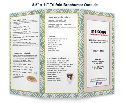 "Mekong 8.5"" x 11"" Tri-fold Brochures"