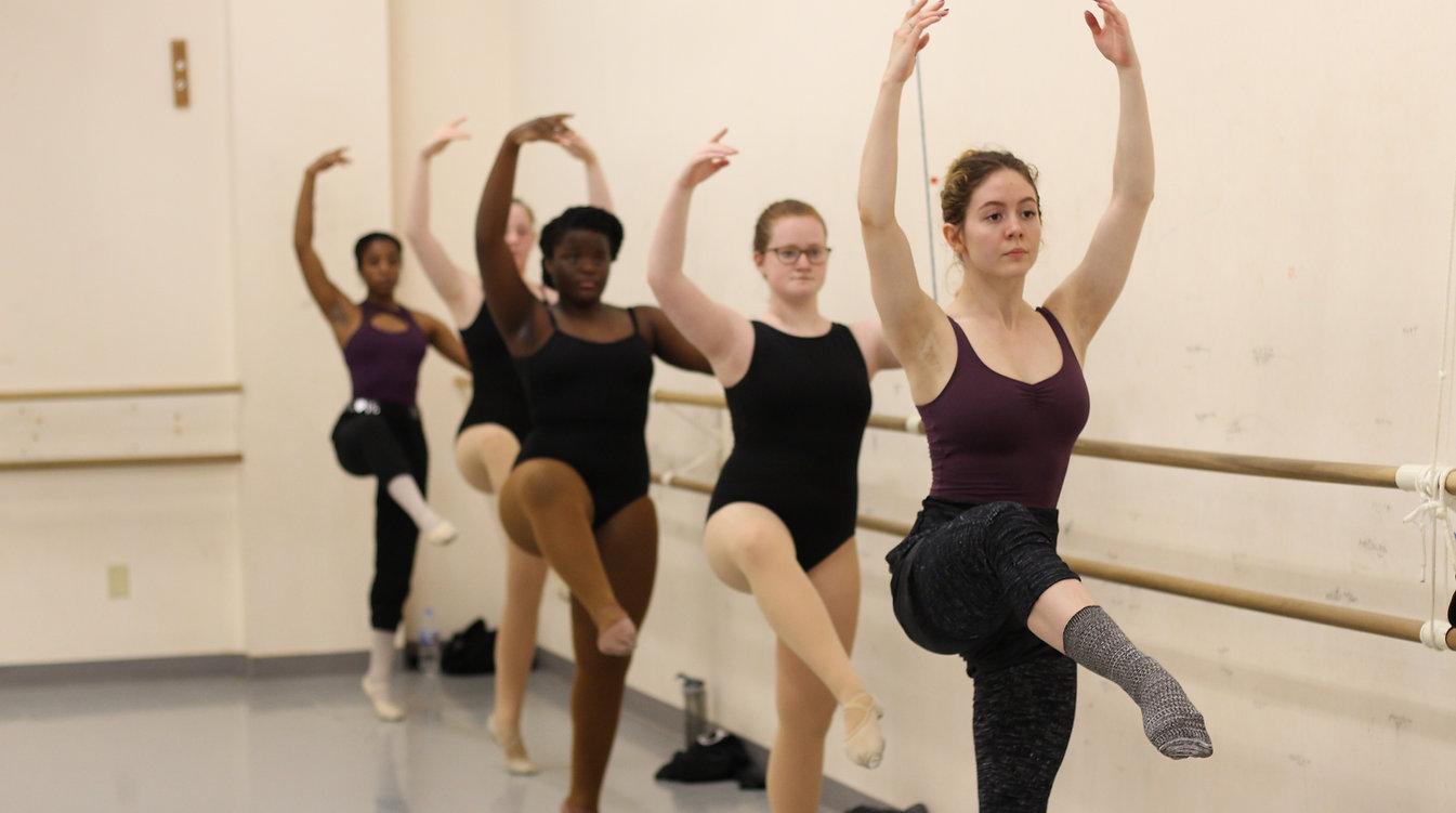 BalletMixLevel.JPG