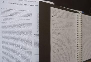 Stammesgeschichte des Menschen.JPG